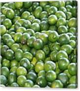 Fruit Bundle Canvas Print
