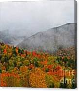 Fruits Loops In Crawford Notch Canvas Print