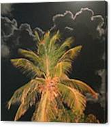 Full Moon In The Caribbean Canvas Print