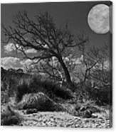 Full Moon Over Jekyll Canvas Print