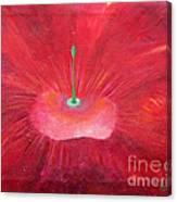 Full Red Flower Canvas Print