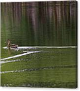 Full Speed Ahead Canvas Print