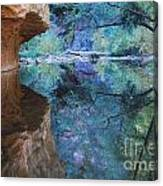 Fully Reflected Canvas Print