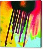 Fusion Five 1 Canvas Print