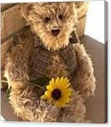 Fuzzy Teddy Canvas Print