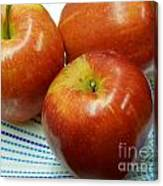 Gala Apples Canvas Print