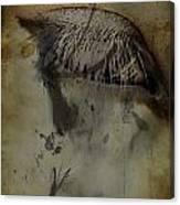 Galloping Glares  Canvas Print