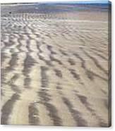 Galveston: Beach Canvas Print