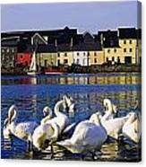 Galway City, County Galway, Ireland Canvas Print
