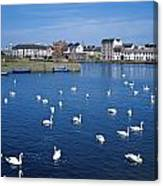 Galway, County Galway, Ireland Canvas Print