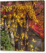 Garage And Leaves Canvas Print