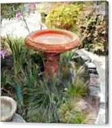 Garden Birdbath Canvas Print