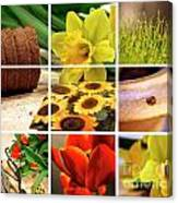 Garden Collage Canvas Print