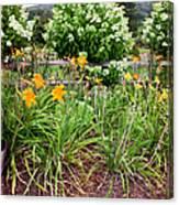 Garden Delight Canvas Print