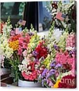 Garden Flower Stand Canvas Print