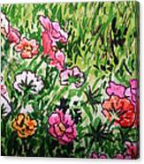 Garden Flowers Sketchbook Project Down My Street Canvas Print