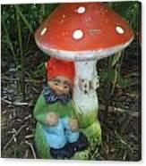 Garden Gnome Under Mushroom Canvas Print
