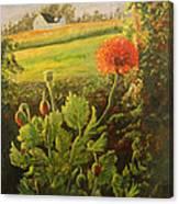 Garden Poppies Canvas Print