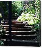 Garden Stairs Canvas Print