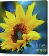Garden Sun Canvas Print