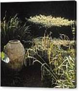 Garden Urns In A Garden Canvas Print