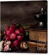Garlic And Radishes Canvas Print