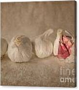 Garlic And Textures Canvas Print