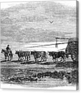 Gauchos, 1858 Canvas Print