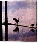 Geese At Dawn Canvas Print