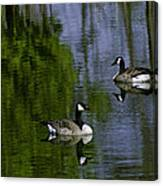 Geese On The Pond Canvas Print