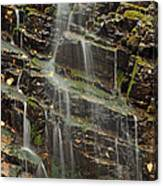 Gentle Waterfall In Glacier National Park Canvas Print