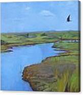 Georgia Marsh Canvas Print
