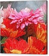 Gerberas In Pastels Canvas Print