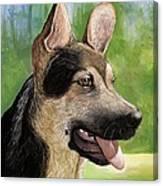 German Shepard Puppy Canvas Print
