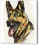 German-shepherd-portrait Canvas Print