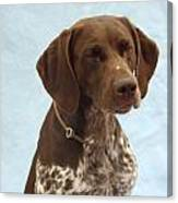 German Shorthaired Pointer 740 Canvas Print