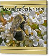 Get Well Card - Bumblebee Canvas Print