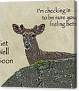 Get Well Card - Whitetail Deer In Velvet Canvas Print