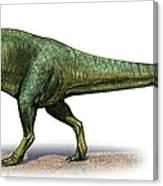 Giganotosaurus Carolinii, A Prehistoric Canvas Print