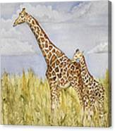 Giraffe And Calf Canvas Print