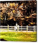 Girl Riding Horse Canvas Print