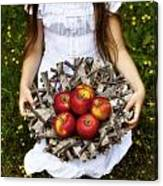 Girl With Apples Canvas Print