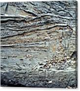 Glacial Sediments Canvas Print