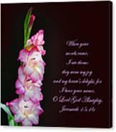 Gladiola Jeremiah 15 16 Canvas Print