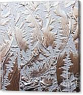 Glass Designs Canvas Print