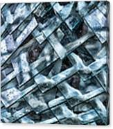 Glass Scales Canvas Print