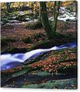 Glenmacnass Waterfall, Co Wicklow Canvas Print