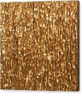 Glistening Gold Prairie Grass Abstract Canvas Print