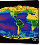 Global Biosphere Canvas Print