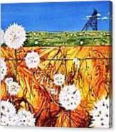 Glorious Goldfields Canvas Print